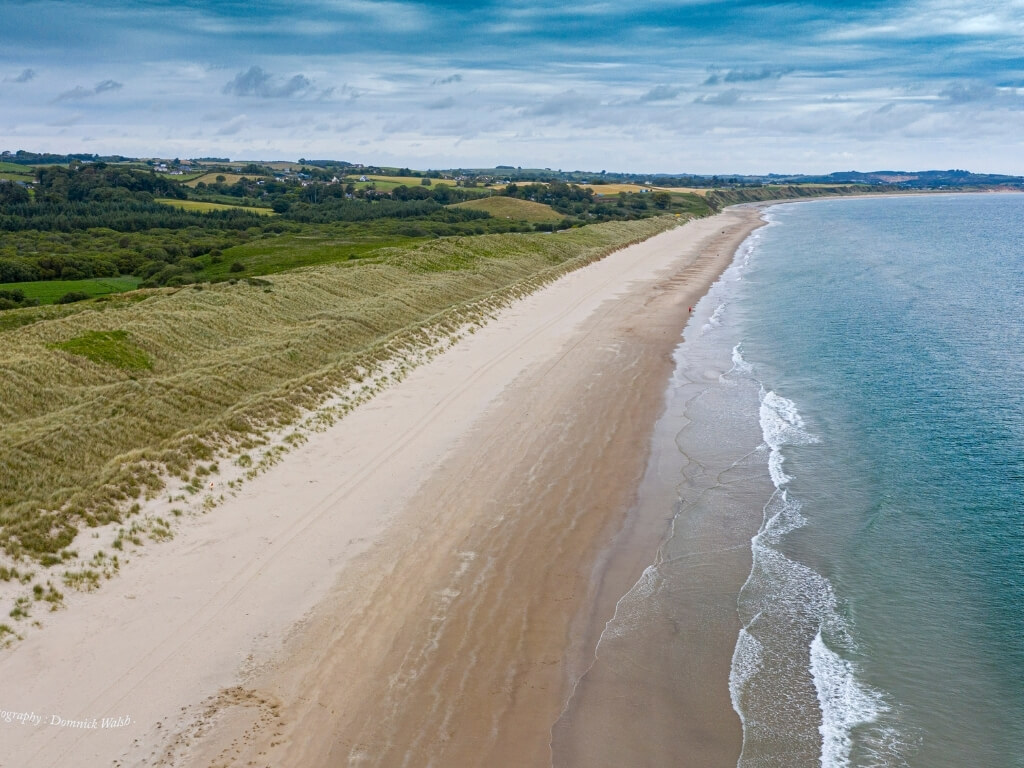 A picture of the long stretch of golden sand at Curracloe beach in Wexford with turquoise water on the right and green grass leading to the sand dunes on the left. A blue sky sits overhead
