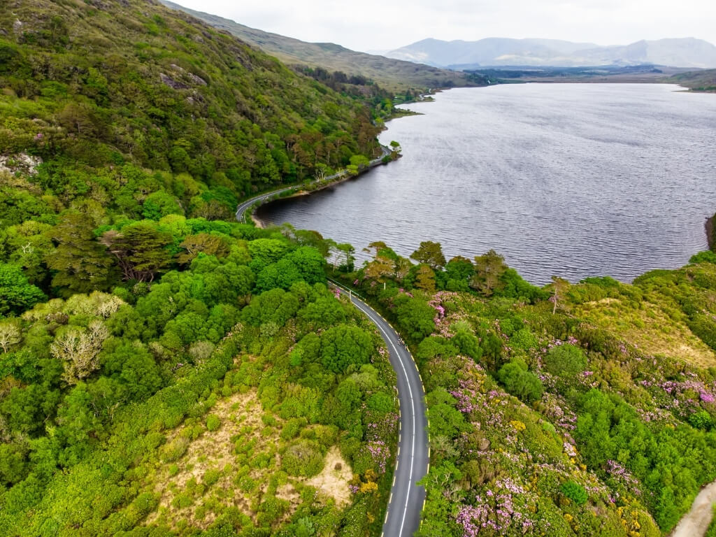 A picture of a road following a route along the edge of a lake in the Connemara National Park in Ireland, with lush green forests and hills around it.