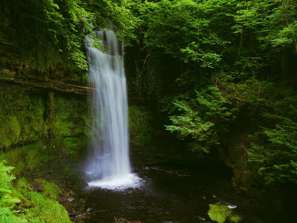 A picture of the Glencar Waterfall in Leitrim, Ireland, one of the best waterfalls in Ireland to see. Lush green vegetation surrounds the milky waterfall