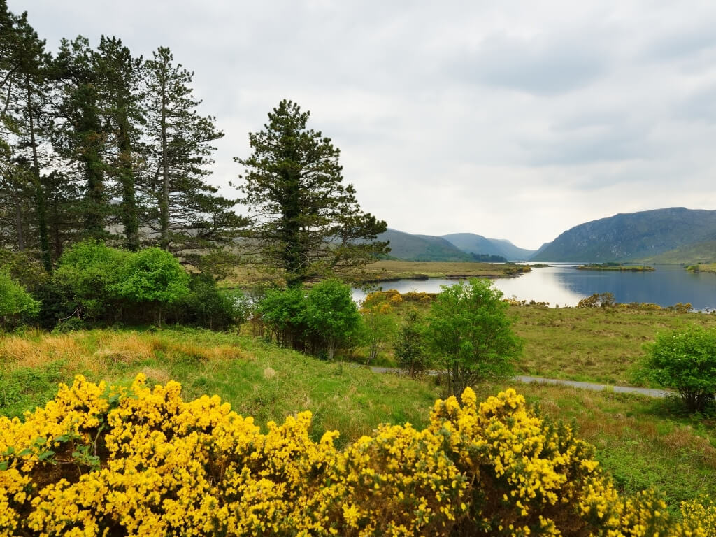 A picture of a lake in the Glenveagh National Park in Ireland with hills in the background and trees in the foreground