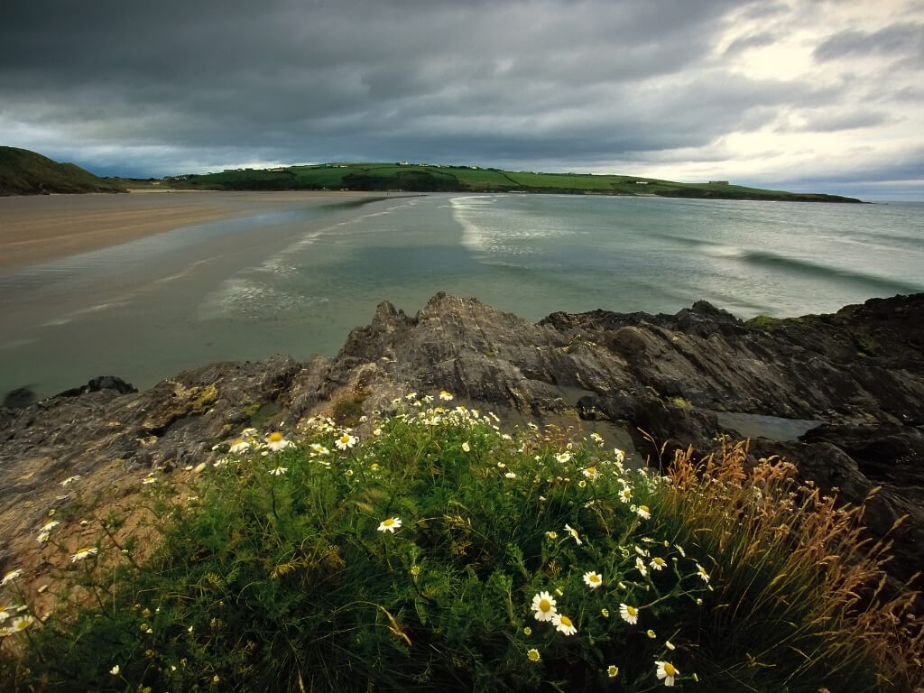 A picture of calm seas at Inchydoney beach leading to the sandy shore with a stormy sky overhead and grass at jagged rocks in the foreground