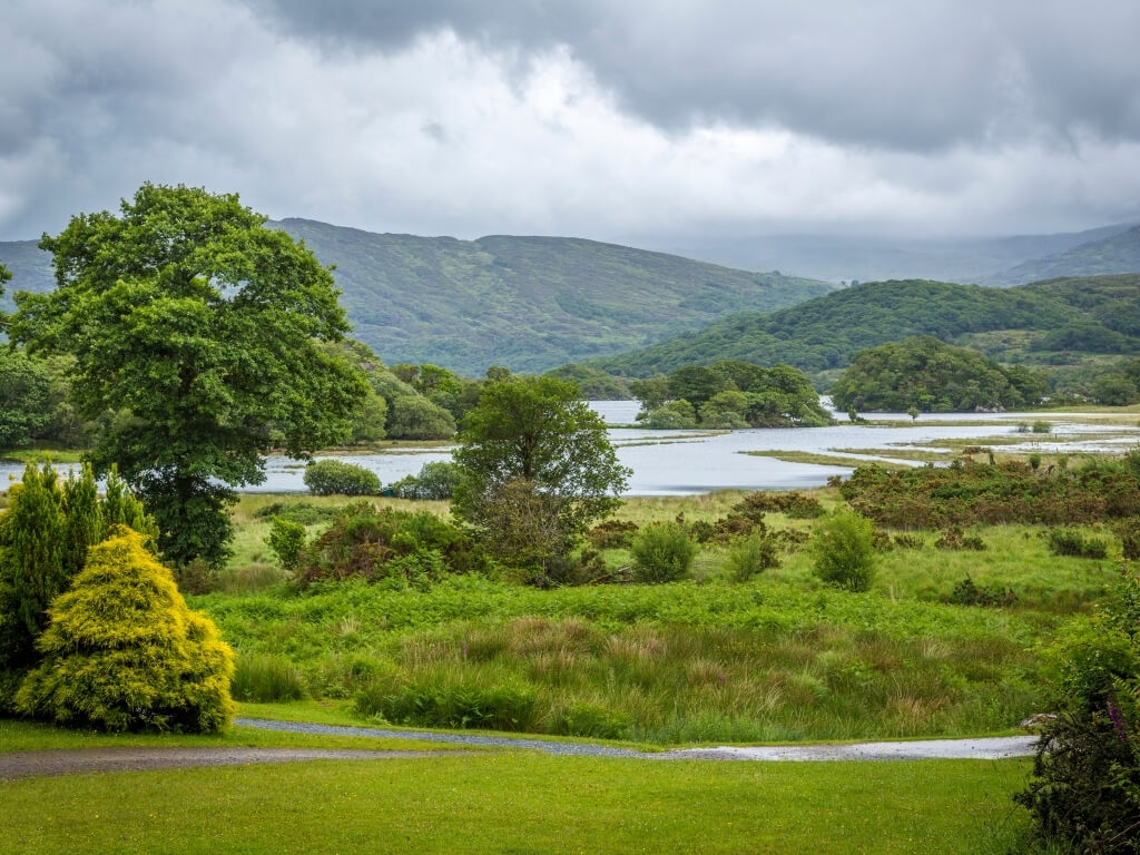 A picture of one of the lakes of Killarney National Park in Ireland surrounded by lush green vegetation and rolling green hills