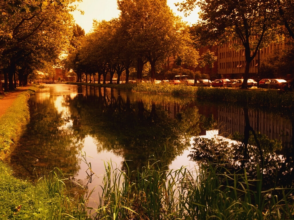 A picture of the Grand Canal in autumn near Mespil Road in Dublin, one of the best times of year to visit Dublin
