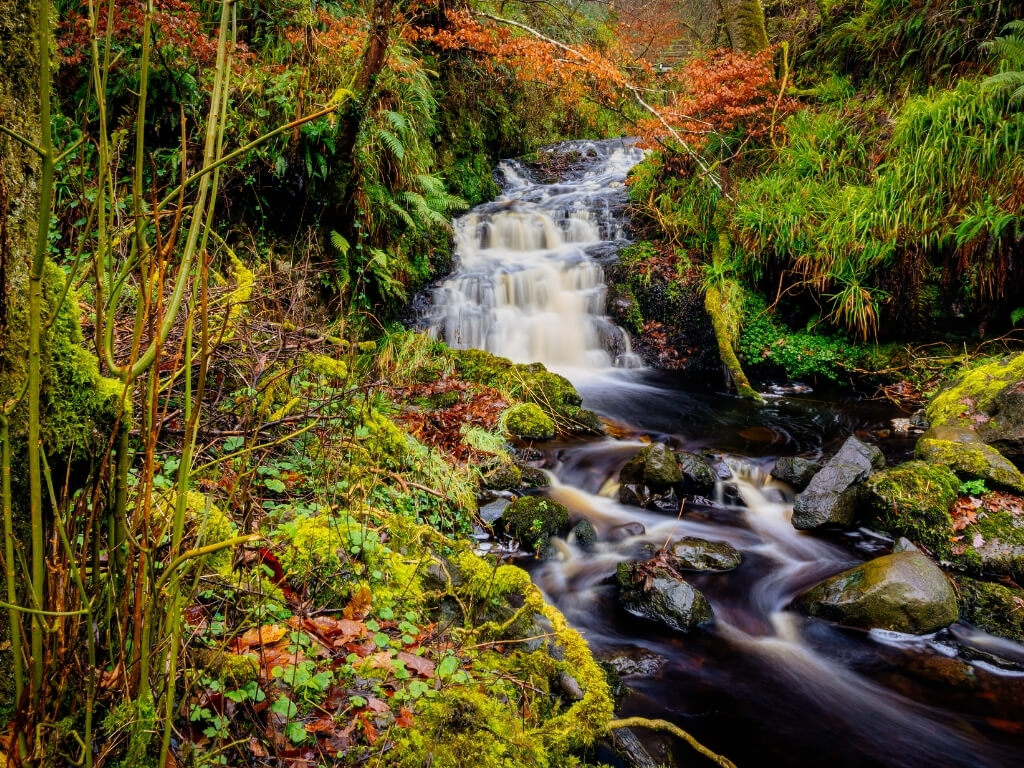A picture of a waterfall in the Glenariff Forest Park in Antrim, Northern Ireland