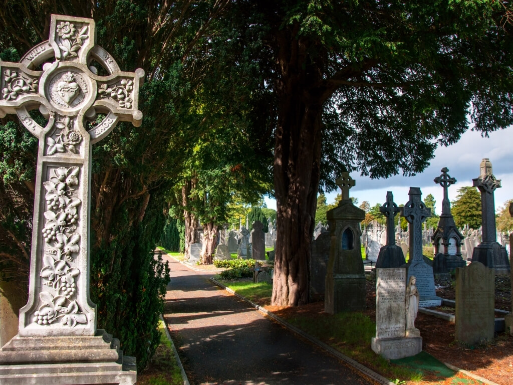 A picture of headstones in the Glasnevin cemetery in Dublin