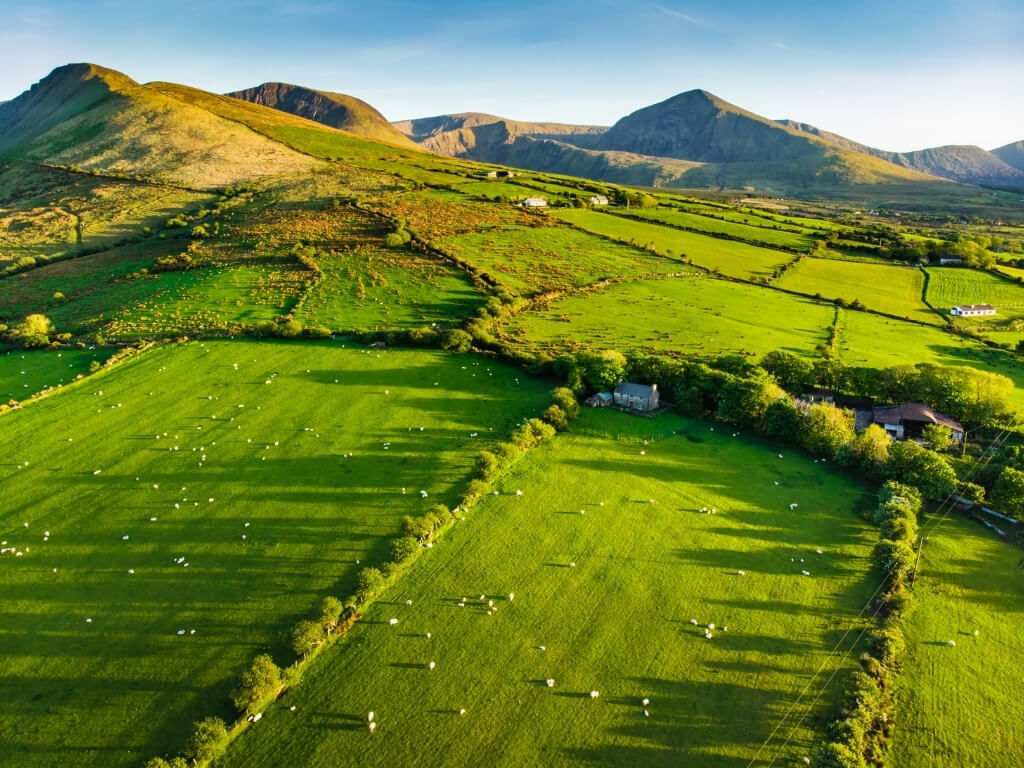 A picture of lush green fields in the countryside of Ireland with hills in the background