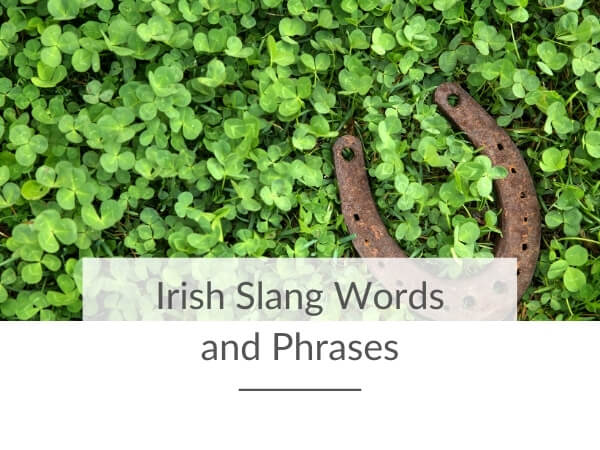 """A picture of a horseshoe in shamrocks with a text overlay saying """"Irish slang words and phrases"""""""