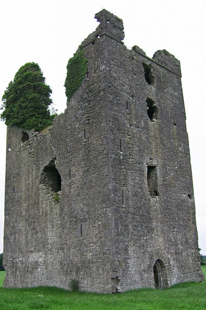 A picture of the ruined remains of Tinnakill Castle, Laois