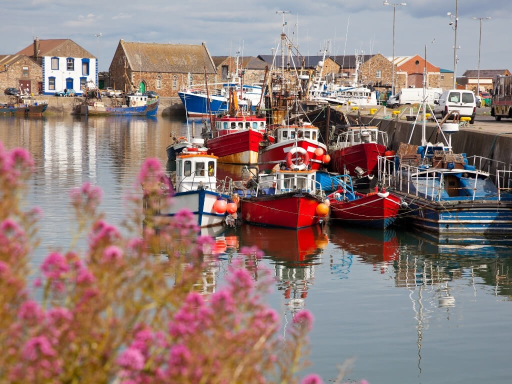 A picture of fishing boats in the harbour at Howth, County Dublin