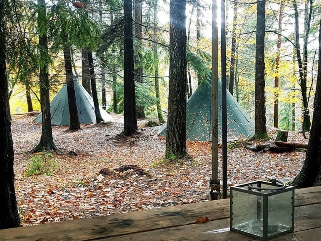 A picture of some of the teepees in the forest at Tipi Adventures Ireland