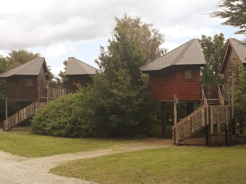 A picture of some of the treehouses at River Valley Holiday Park