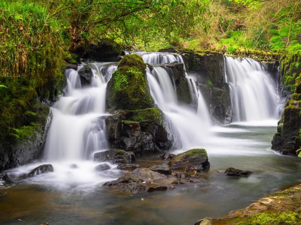 A picture of the milky water of the Clare Glens Cascades waterfall in Ireland