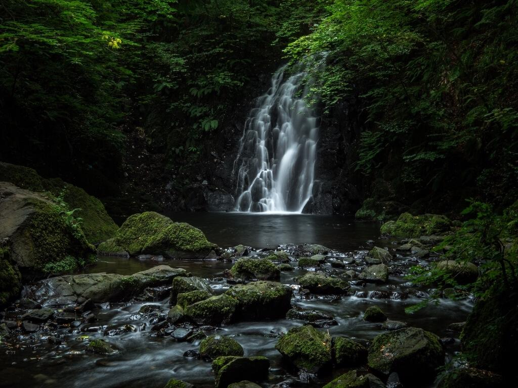 A picture of the Glenoe Waterfall surrounded by lush green vegetation