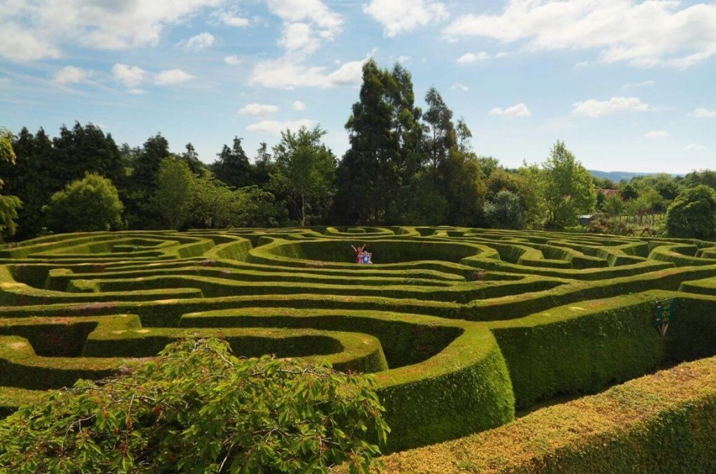 A picture of the Grennan Maze in Ireland with its lush green hedges and some people in the centre