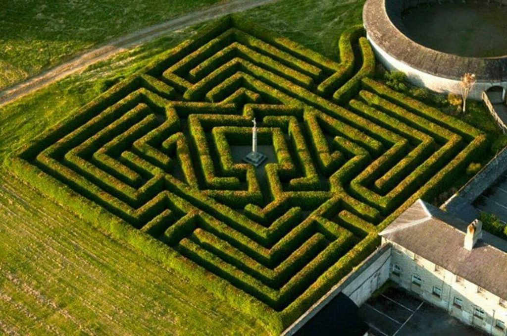 A picture of the hedge maze at Russborough House from above