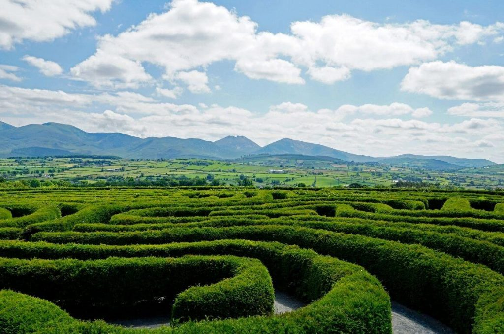 A picture of the hedges of The Peace Maze in Northern Ireland with a the Mourne Mountains in the background