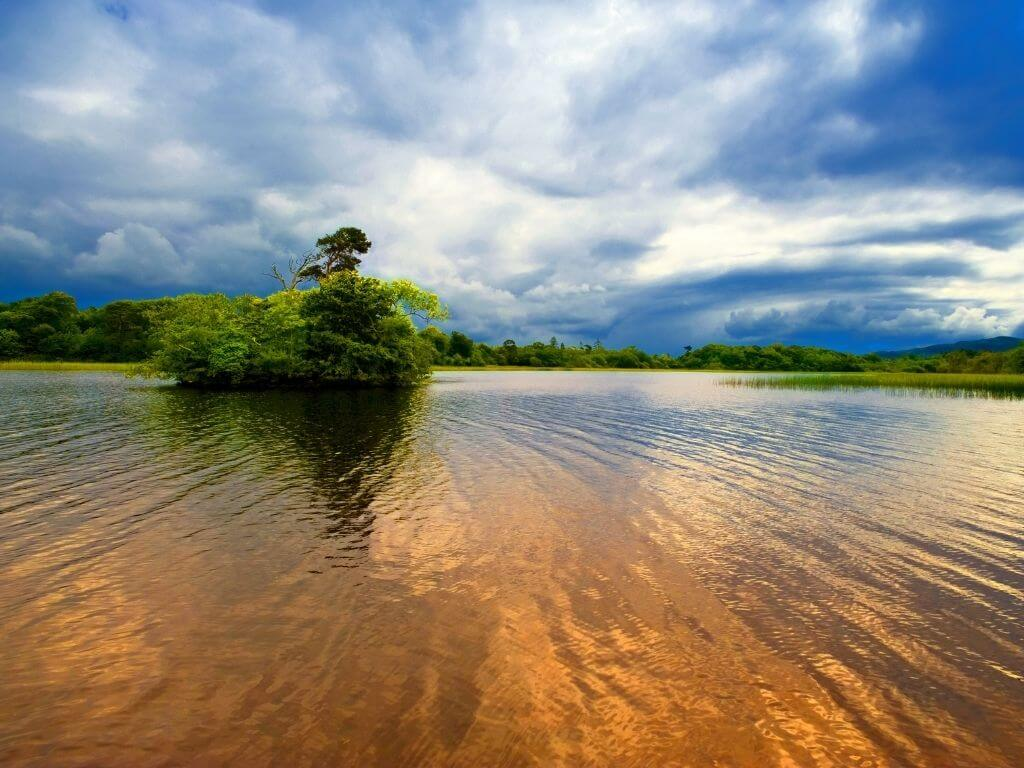A picture of Lough Gill in Leitrim with a tree on an island in the water